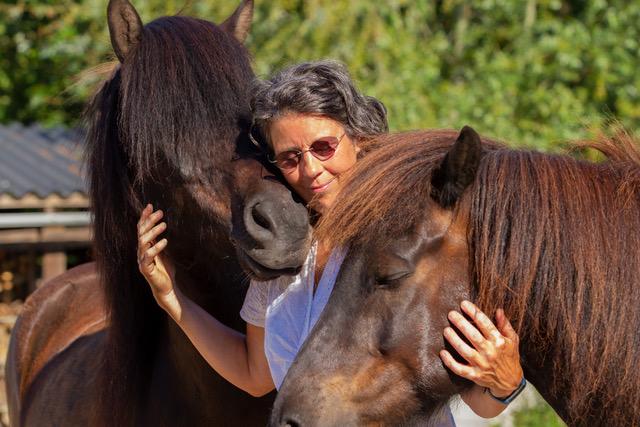paarden marion samen 1